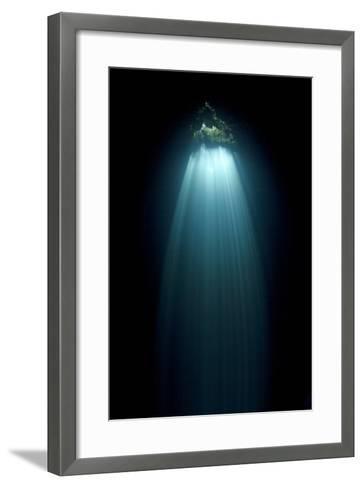 Light Entering Cenote Siete Bocas, Near Puerto Morelos, Riviera Maya, Yucatan Peninsula, Mexico-Claudio Contreras-Framed Art Print