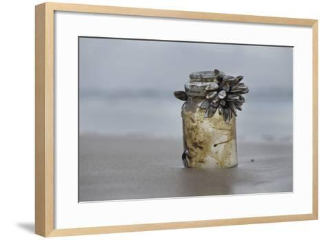 Goose Barnacle (Pollicipes Sp) Attached to Bottle-Luis Quinta-Framed Art Print