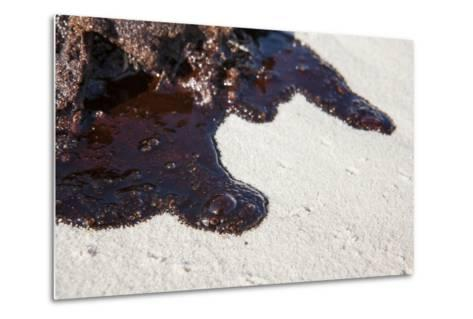 Oil on Beach from the Bp Oil Spill, Alabama, USA. Gulf of Mexico, June 2010-Krista Schlyer-Metal Print