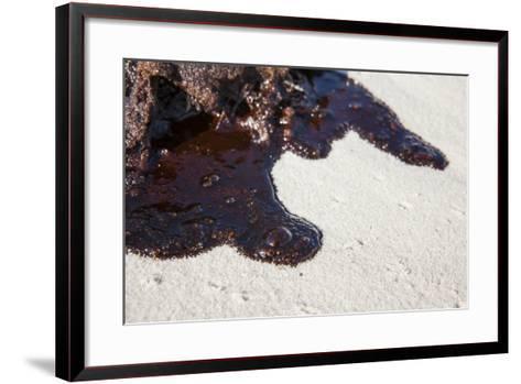 Oil on Beach from the Bp Oil Spill, Alabama, USA. Gulf of Mexico, June 2010-Krista Schlyer-Framed Art Print