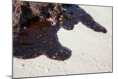 Oil on Beach from the Bp Oil Spill, Alabama, USA. Gulf of Mexico, June 2010-Krista Schlyer-Mounted Photographic Print