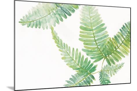 Ferns I Square-Chris Paschke-Mounted Art Print