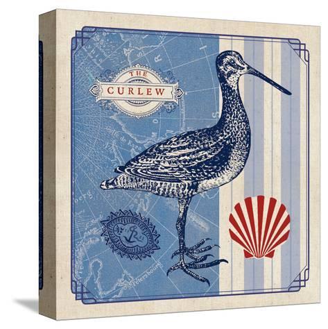Sea Bird III- Studio Mousseau-Stretched Canvas Print