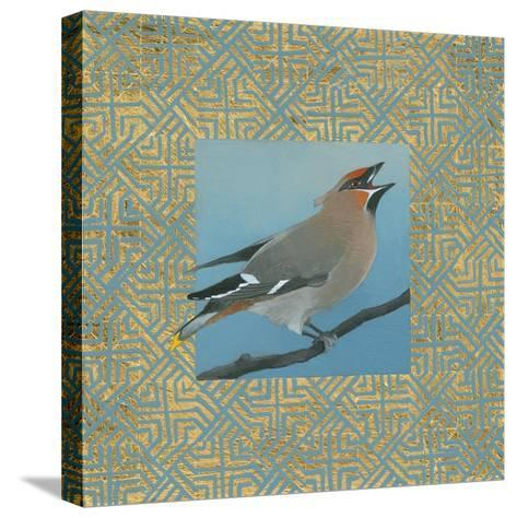 Cedar Waxwing Border-Kathrine Lovell-Stretched Canvas Print
