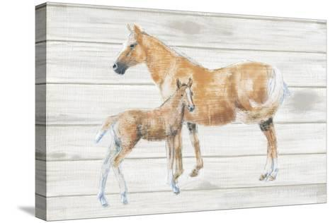 Horse and Colt on Wood-Emily Adams-Stretched Canvas Print