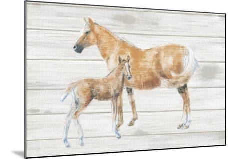 Horse and Colt on Wood-Emily Adams-Mounted Art Print