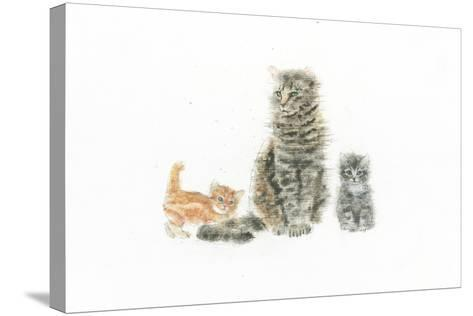 Cat and Kittens-Emily Adams-Stretched Canvas Print