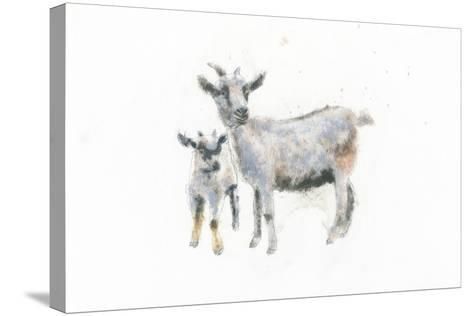 Goat and Kid-Emily Adams-Stretched Canvas Print