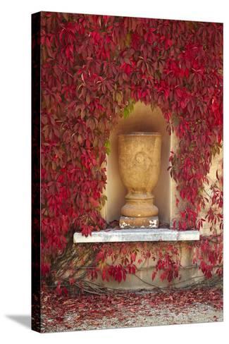Autumn Color at the Italian Renaissance Garden, Hamilton, Waikato, North Island, New Zealand-David Wall-Stretched Canvas Print