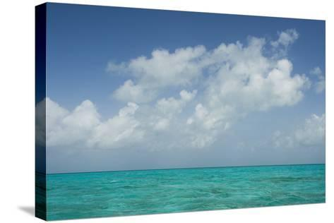 Caribbean Ocean Near Ambergris Caye, Belize-Pete Oxford-Stretched Canvas Print
