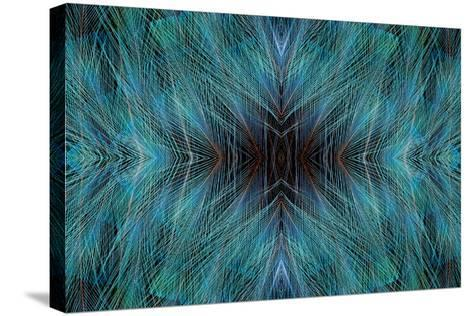 Blue, Bird of Paradise Feathers-Darrell Gulin-Stretched Canvas Print