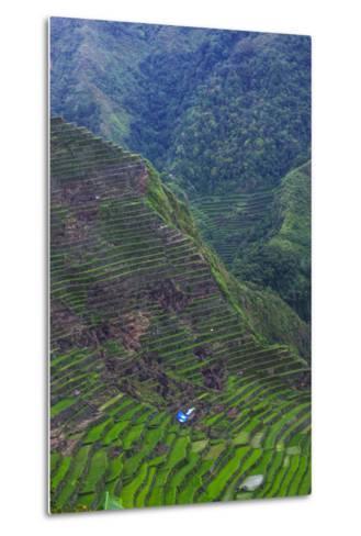 Batad Rice Terraces, Banaue, Luzon, Philippines-Michael Runkel-Metal Print