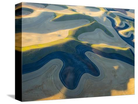 Aerial Photography at Harvest Time in the Palouse Region of Eastern Washington-Julie Eggers-Stretched Canvas Print