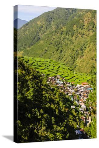 Along the Rice Terraces from Bontoc to Banaue, Luzon, Philippines-Michael Runkel-Stretched Canvas Print
