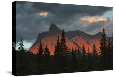 Alpenglow, from Kicking Horse River, British Columbia, Canada-Michel Hersen-Stretched Canvas Print