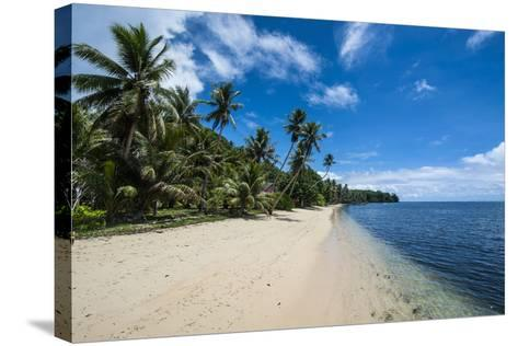 Beautiful White Sand Beach and Palm Trees on the Island of Yap, Micronesia-Michael Runkel-Stretched Canvas Print