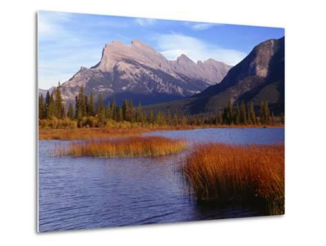 Canada, Alberta, Banff National Park, Marsh Grass in Vermilion Lakes and Mount Rundle-John Barger-Metal Print