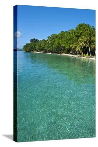 Beach at the Aore Islet before the Island of Espiritu Santo, Vanuatu, South Pacific-Michael Runkel-Stretched Canvas Print