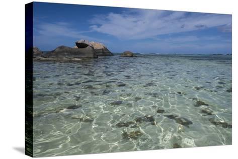 Indian Ocean, Seychelles, Mahe, St. Anne Marine National Park, Moyenne Island-Cindy Miller Hopkins-Stretched Canvas Print