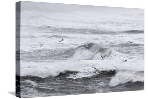 North Atlantic Coast Near Vik Y Myrdal During a Winter Storm with Heavy Gales-Martin Zwick-Stretched Canvas Print