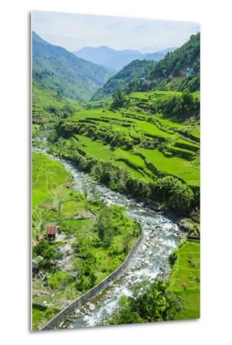 Hapao Rice Terraces, World Heritage Site, Banaue, Luzon, Philippines-Michael Runkel-Metal Print