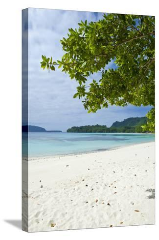 Island of Espiritu Santo, Vanuatu, South Pacific-Michael Runkel-Stretched Canvas Print