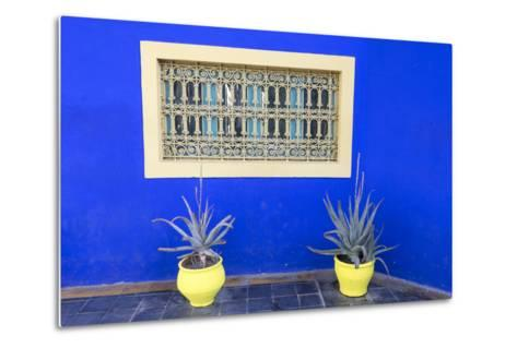 Morocco, Marrakech, Potted Succulent Plants Outside a Blue Building-Emily Wilson-Metal Print