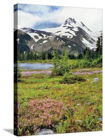 USA, Oregon, Mt Jefferson Wilderness. Mount Jefferson and Field of Wildflowers-Jaynes Gallery-Stretched Canvas Print