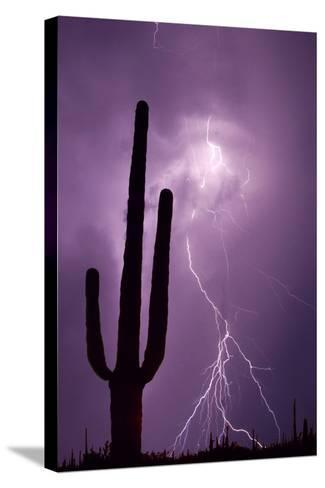 USA, Arizona. Composite of Saguaro Cactus and Lightning-Jaynes Gallery-Stretched Canvas Print