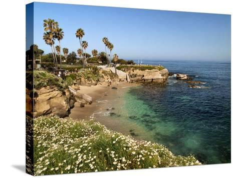 USA, California, La Jolla, Clear Water on a Spring Day at La Jolla Cove-Ann Collins-Stretched Canvas Print