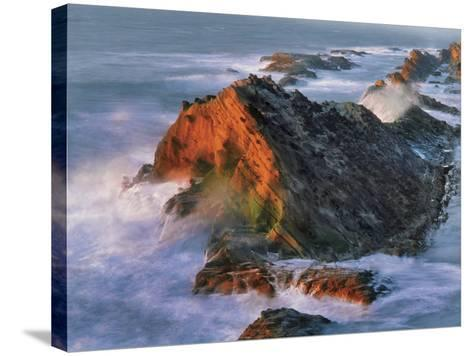 USA, Oregon, Shore Acres State Park. Sunset Light on Ocean Shore Cliffs-Jaynes Gallery-Stretched Canvas Print