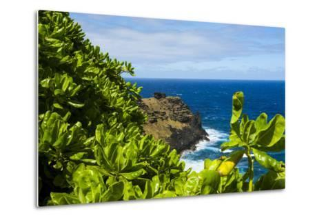 Ofu Island, Manu'A Island Group, American Samoa, South Pacific-Michael Runkel-Metal Print