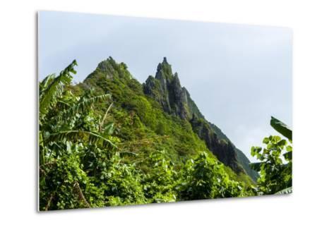 Ofu Island, Manu'A Island Group, American Samoa, South Pacific-Michael Runkel-Metal Print