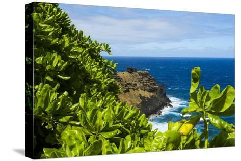 Ofu Island, Manu'A Island Group, American Samoa, South Pacific-Michael Runkel-Stretched Canvas Print