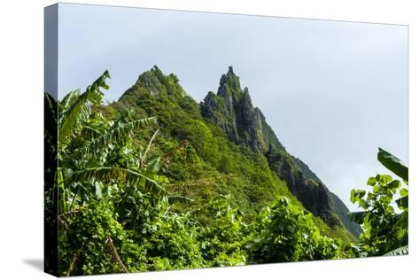 Ofu Island, Manu'A Island Group, American Samoa, South Pacific-Michael Runkel-Stretched Canvas Print
