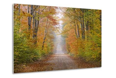 Road in Fall Color Schoolcraft County, Upper Peninsula, Michigan-Richard and Susan Day-Metal Print
