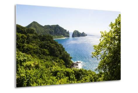 National Park of American Samoa, Tutuila Island, American Samoa, South Pacific-Michael Runkel-Metal Print