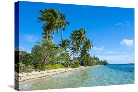 Palm Fringed White Sand Beach on an Islet of Vava'U, Tonga, South Pacific-Michael Runkel-Stretched Canvas Print