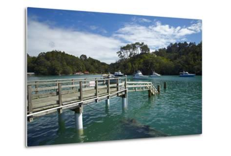 Omaha Cove, Leigh, North Auckland, North Island, New Zealand-David Wall-Metal Print