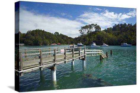 Omaha Cove, Leigh, North Auckland, North Island, New Zealand-David Wall-Stretched Canvas Print