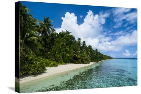 Paradise White Sand Beach in Turquoise Water in the Ant Atoll, Pohnpei, Micronesia-Michael Runkel-Stretched Canvas Print