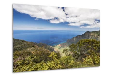 Hawaii, Kauai, Kokee State Park, View of the Kalalau Valley from Kalalau Lookout-Rob Tilley-Metal Print