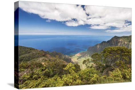 Hawaii, Kauai, Kokee State Park, View of the Kalalau Valley from Kalalau Lookout-Rob Tilley-Stretched Canvas Print