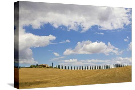 Italy, Tuscany. Cypress Tree Alley and Farm House-Jaynes Gallery-Stretched Canvas Print