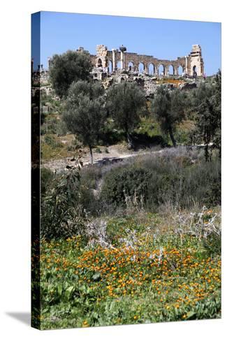 Morocco, Volubilis. Ancient Roman Ruins at Volubilis-Kymri Wilt-Stretched Canvas Print