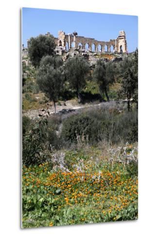 Morocco, Volubilis. Ancient Roman Ruins at Volubilis-Kymri Wilt-Metal Print