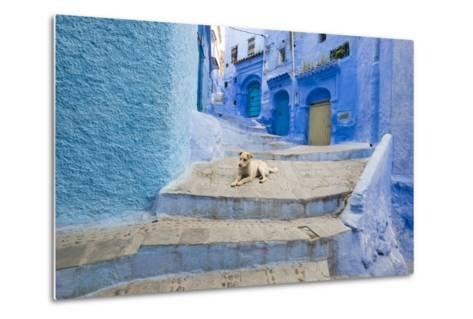 Morocco. Blue Narrow Streets and Neighborhooda of Chaouen-Emily Wilson-Metal Print