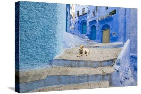 Morocco. Blue Narrow Streets and Neighborhooda of Chaouen-Emily Wilson-Stretched Canvas Print