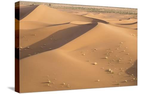Morocco. Erg Chegaga Is a Saharan Sand Dune-Emily Wilson-Stretched Canvas Print