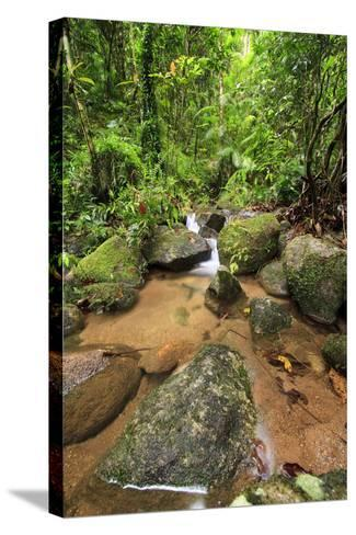 Josephine Falls Is One of the Most Popular Sets of Waterfalls on the South Side of Cairns-Paul Dymond-Stretched Canvas Print